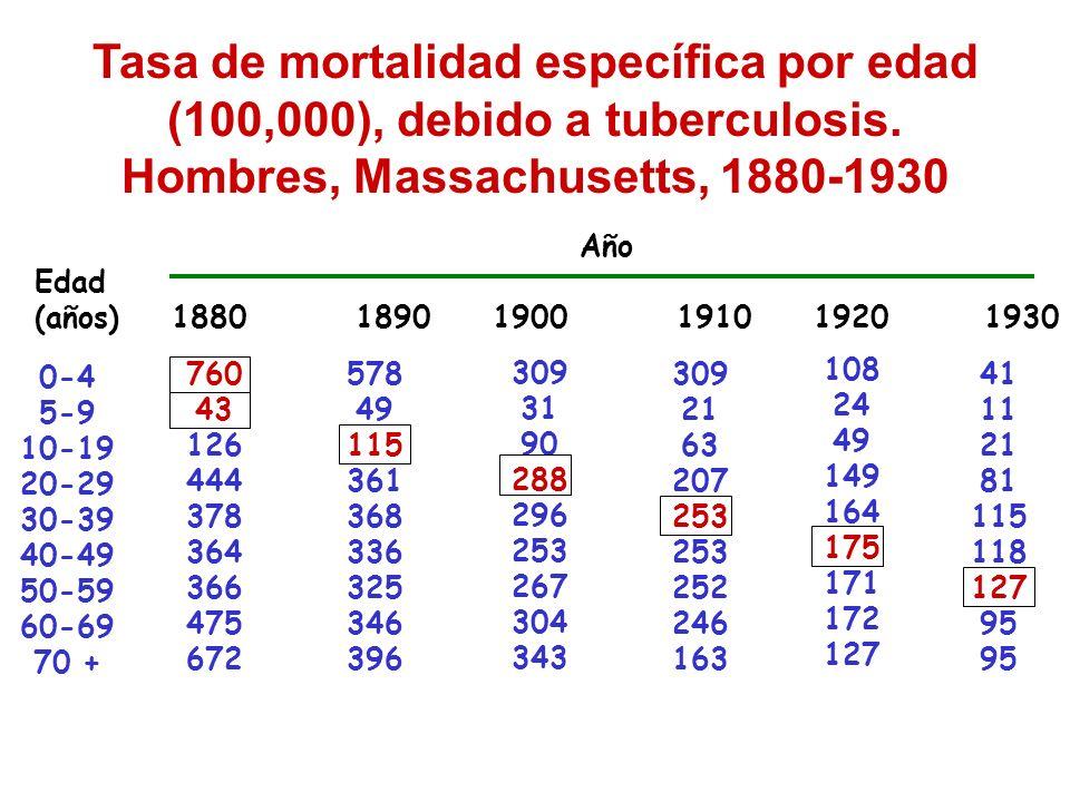 Tasa de mortalidad específica por edad (100,000), debido a tuberculosis. Hombres, Massachusetts, 1880-1930 Edad (años) Año 1880 18901900 19101920 1930