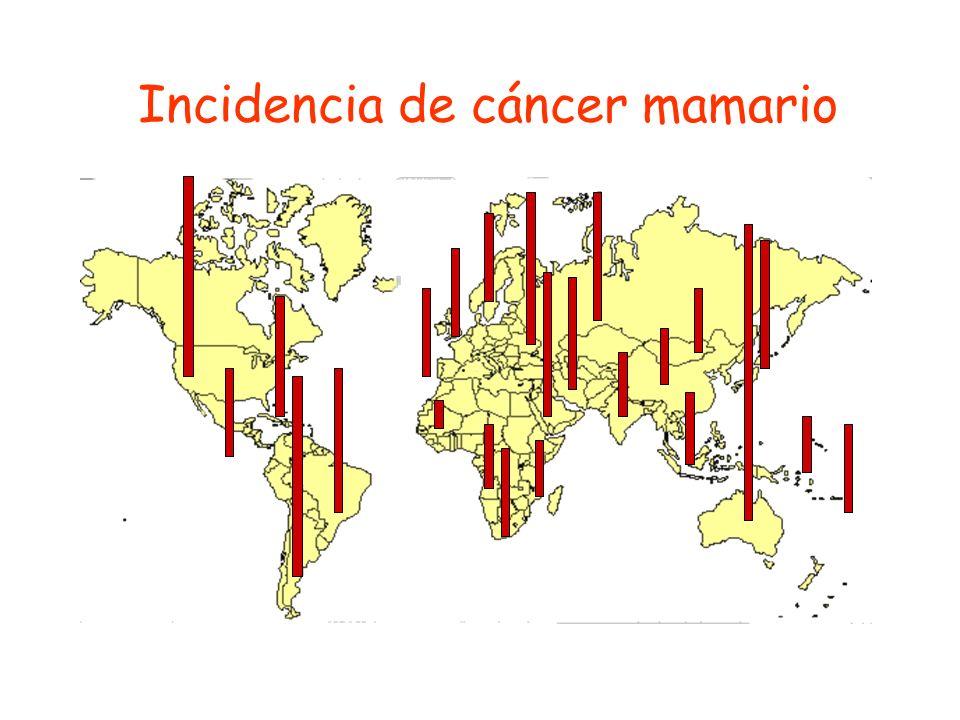 Tasas estandarizadas por edad en la población femenina 130 135 140 145 150 155 160 1970197519801985-9 Año de fallecimiento Tasa de mortalidad por millón de p-as