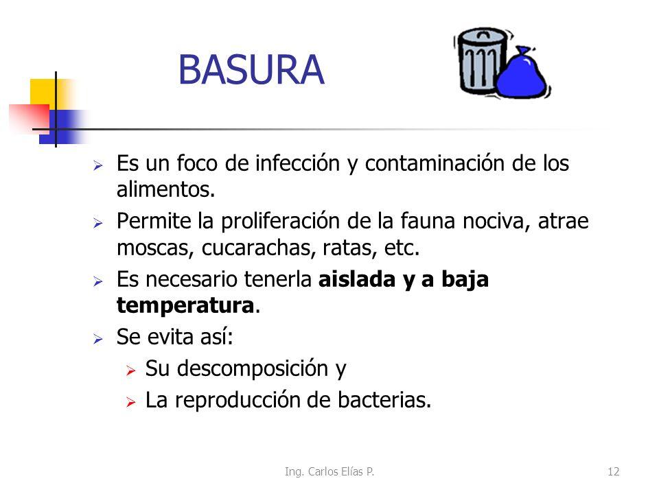 BASURA Es un foco de infección y contaminación de los alimentos. Permite la proliferación de la fauna nociva, atrae moscas, cucarachas, ratas, etc. Es
