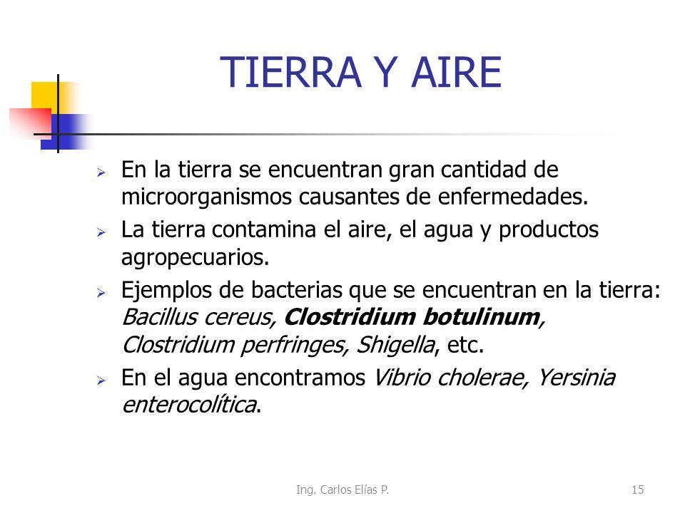 TIERRA Y AIRE En la tierra se encuentran gran cantidad de microorganismos causantes de enfermedades. La tierra contamina el aire, el agua y productos
