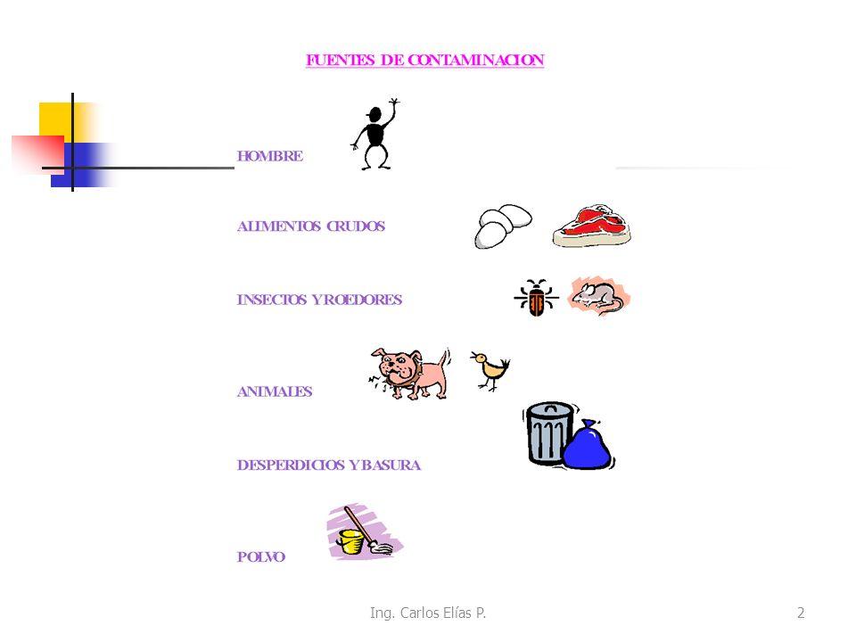 EL HOMBRE COMO AGENTE CONTAMINADOR Es el principal vehículo de contaminación de los alimentos.