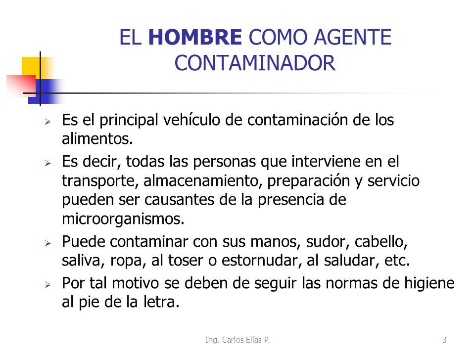 EL HOMBRE COMO AGENTE CONTAMINADOR Es el principal vehículo de contaminación de los alimentos. Es decir, todas las personas que interviene en el trans