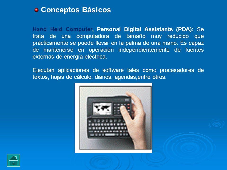Hand Held Computer, Personal Digital Assistants (PDA): Se trata de una computadora de tamaño muy reducido que prácticamente se puede llevar en la palm