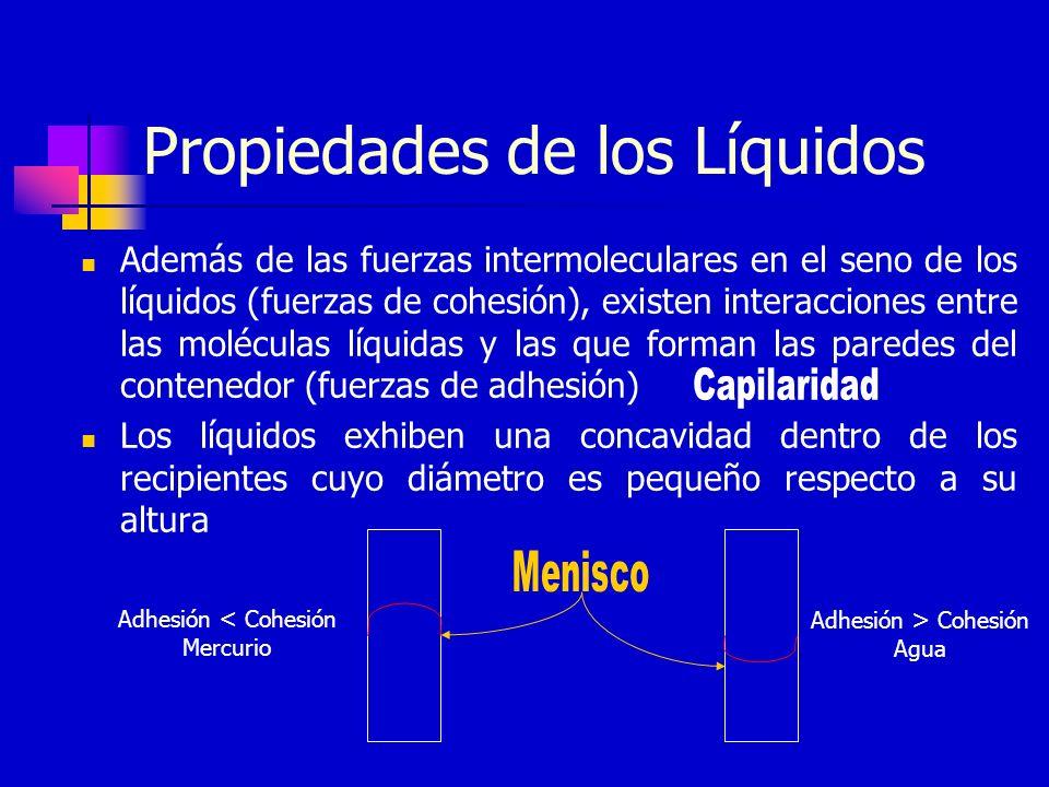Propiedades de los Líquidos Además de las fuerzas intermoleculares en el seno de los líquidos (fuerzas de cohesión), existen interacciones entre las m