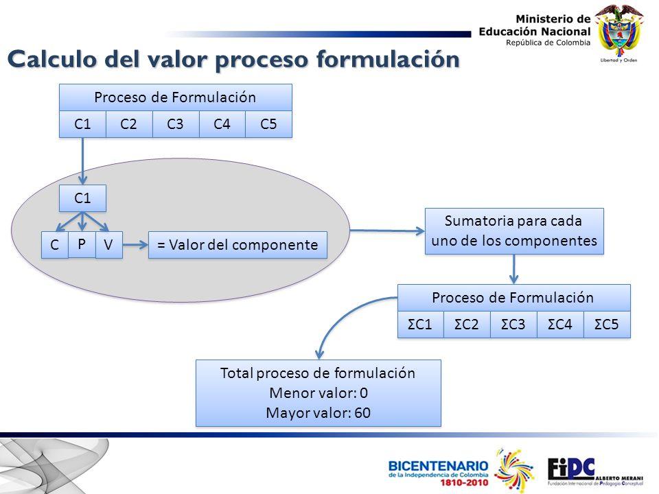 Proceso de Formulación C1 C2 C3 C4 C5 C C P P V V C1 = Valor del componente Sumatoria para cada uno de los componentes Proceso de Formulación ΣC1 ΣC2 ΣC3 ΣC4 ΣC5 Total proceso de formulación Menor valor: 0 Mayor valor: 60 Total proceso de formulación Menor valor: 0 Mayor valor: 60 Calculo del valor proceso formulación