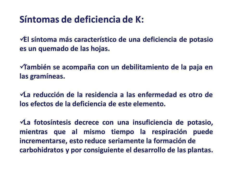 Síntomas de deficiencia de K: El síntoma más característico de una deficiencia de potasio es un quemado de las hojas. También se acompaña con un debil
