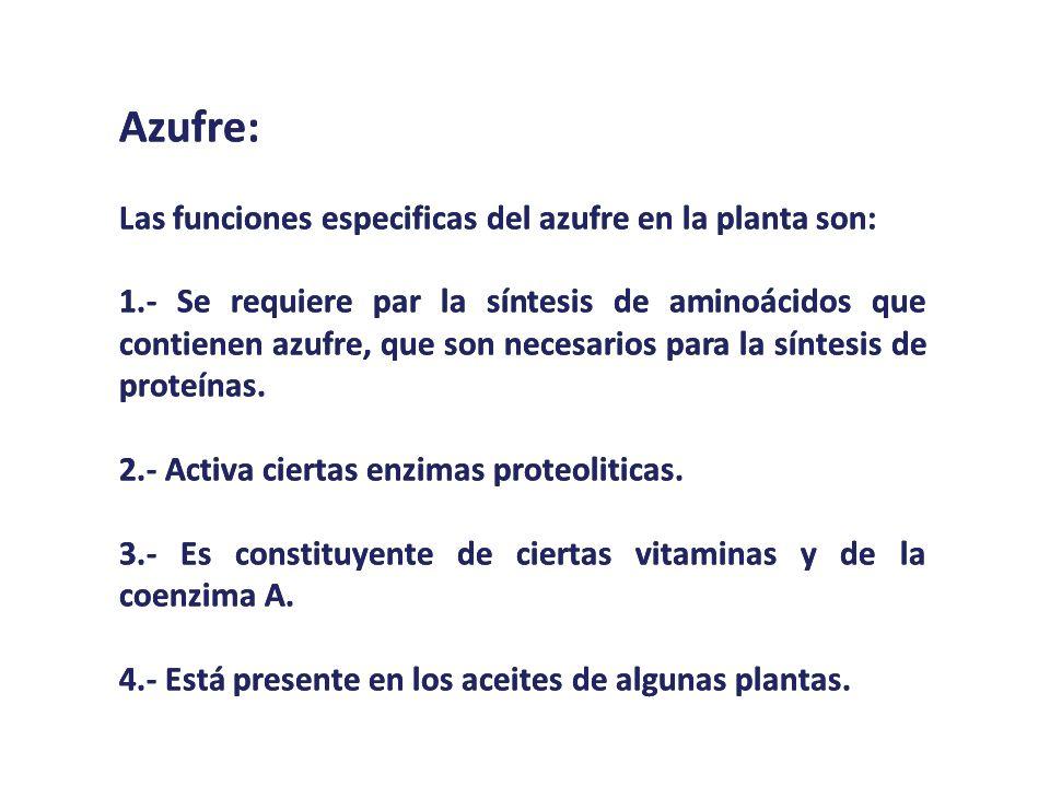 Azufre: Las funciones especificas del azufre en la planta son: 1.- Se requiere par la síntesis de aminoácidos que contienen azufre, que son necesarios