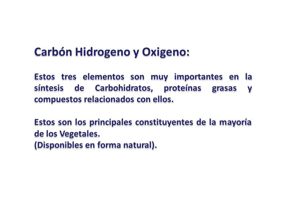 Carbón Hidrogeno y Oxigeno: Estos tres elementos son muy importantes en la síntesis de Carbohidratos, proteínas grasas y compuestos relacionados con e