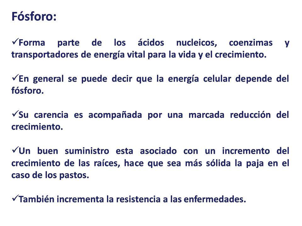 RECOMENDACIONES DE USO: PLANTASDOSISFRECUENCIA CESPED 30 a 50 GRS por m² 4 A 8 CUHARADAS SOPERAS POR m².