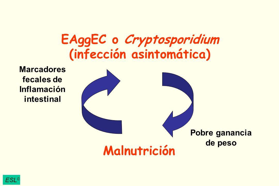 ESL © EAggEC o Cryptosporidium (infección asintomática) Malnutrición Marcadores fecales de Inflamación intestinal Pobre ganancia de peso