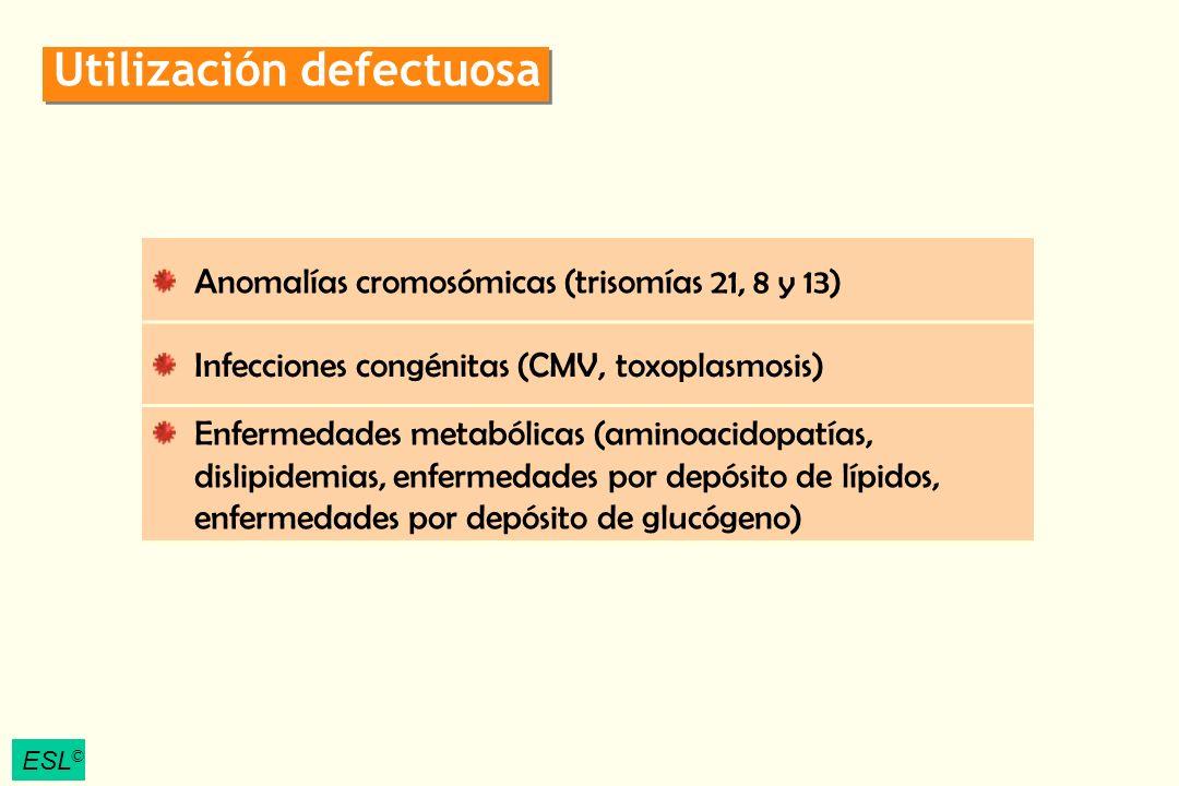 ESL © Utilización defectuosa Anomalías cromosómicas (trisomías 21, 8 y 13) Infecciones congénitas (CMV, toxoplasmosis) Enfermedades metabólicas (amino