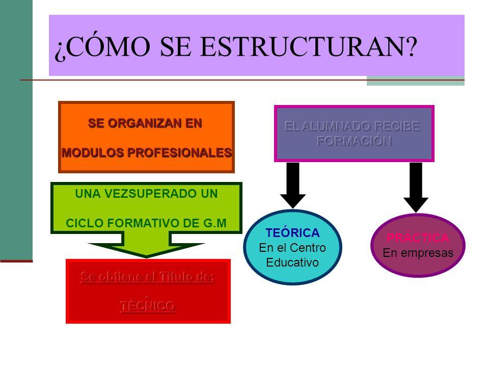 ¿CÓMO SE ESTRUCTURAN? SE ORGANIZAN EN MODULOS PROFESIONALES TEÓRICA En el Centro Educativo PRÁCTICA En empresas UNA VEZSUPERADO UN CICLO FORMATIVO DE