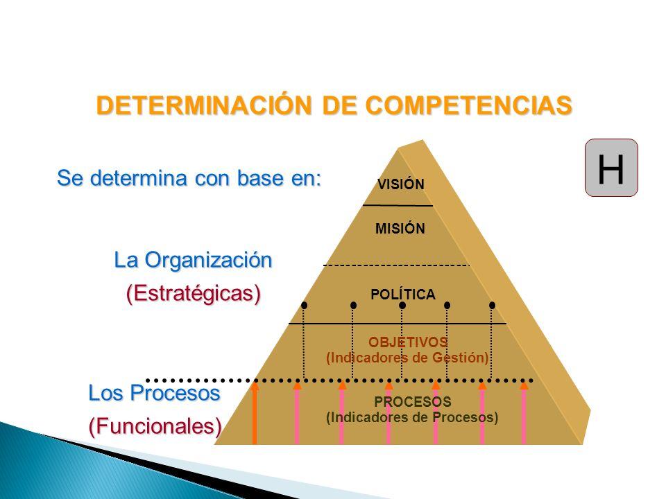 DETERMINACIÓN DE COMPETENCIAS Se determina con base en: VISIÓN MISIÓN POLÍTICA PROCESOS (Indicadores de Procesos) OBJETIVOS (Indicadores de Gestión) L