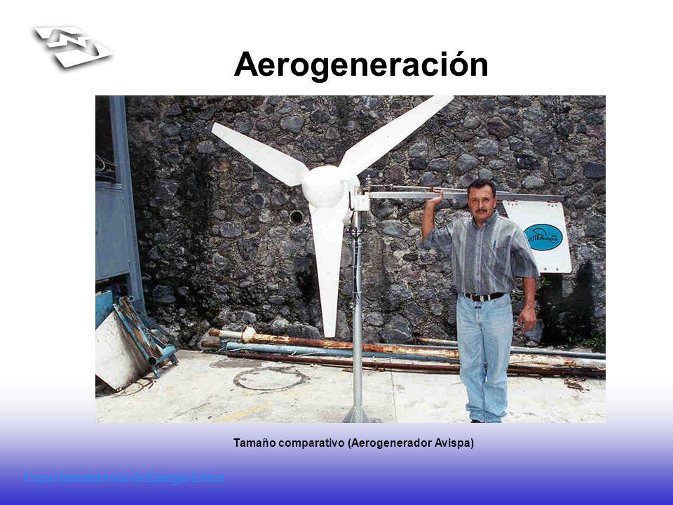 Curso Introductorio de Energía Eólica Aerogeneración Tamaño comparativo (Aerogenerador Avispa)