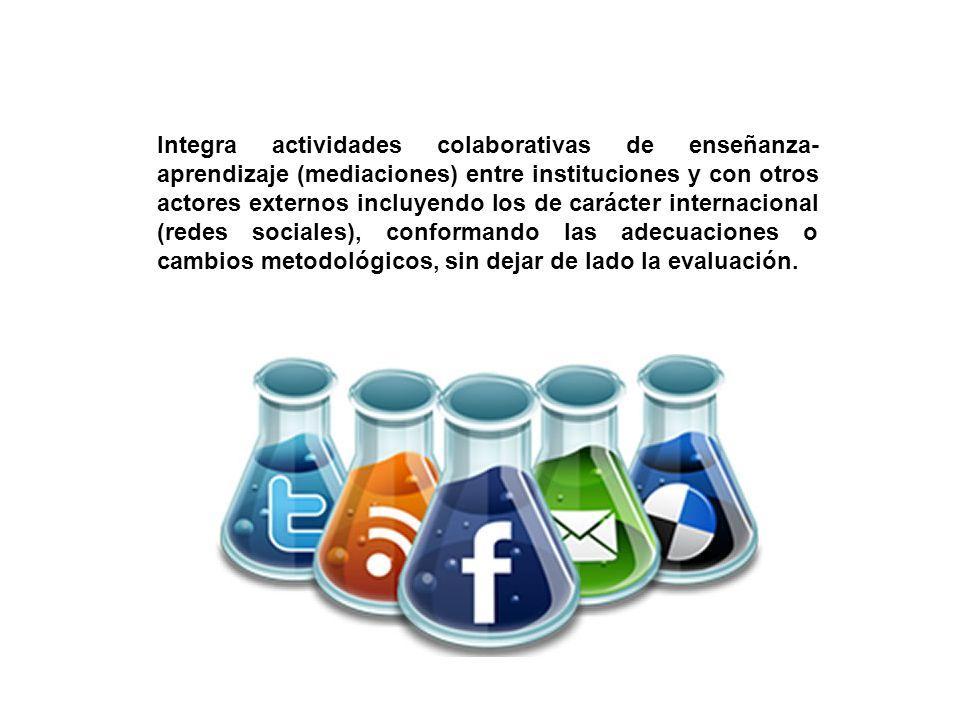 Integra actividades colaborativas de enseñanza- aprendizaje (mediaciones) entre instituciones y con otros actores externos incluyendo los de carácter