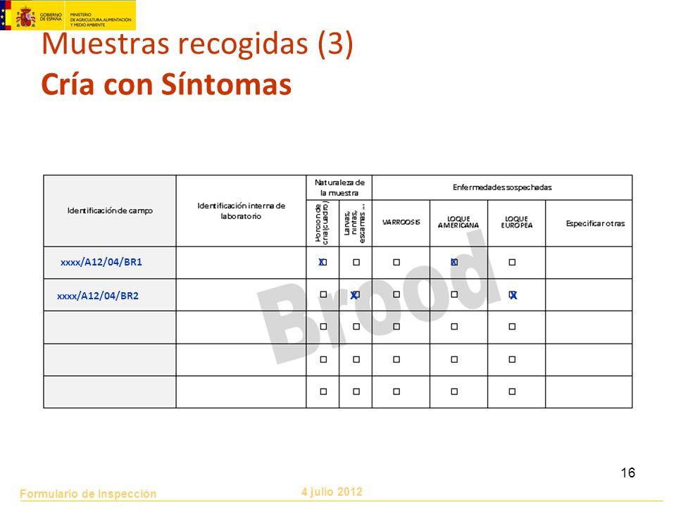 Formulario de Inspección 4 julio 2012 16 Muestras recogidas (3) Cría con Síntomas xxxx/A12/04/BR1 XX xxxx/A12/04/BR2 x x