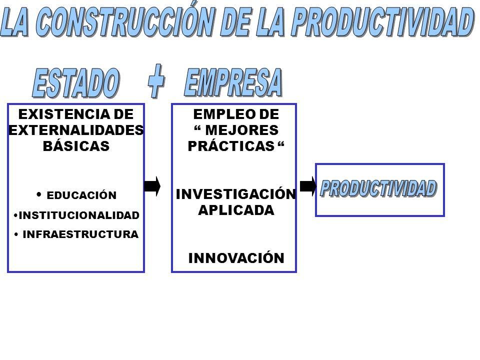 EXISTENCIA DE EXTERNALIDADES BÁSICAS EDUCACIÓN INSTITUCIONALIDAD INFRAESTRUCTURA EMPLEO DE MEJORES PRÁCTICAS INVESTIGACIÓN APLICADA INNOVACIÓN
