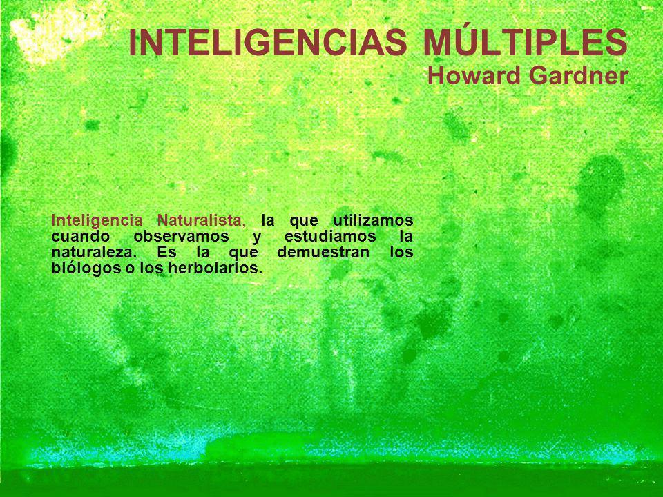 INTELIGENCIAS MÚLTIPLES Howard Gardner Inteligencia Naturalista, la que utilizamos cuando observamos y estudiamos la naturaleza. Es la que demuestran
