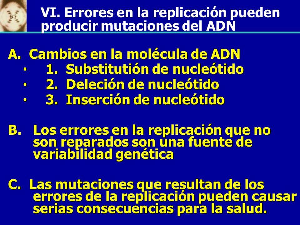 A. Cambios en la molécula de ADN 1. Substitutión de nucleótido 1. Substitutión de nucleótido 2. Deleción de nucleótido 2. Deleción de nucleótido 3. In