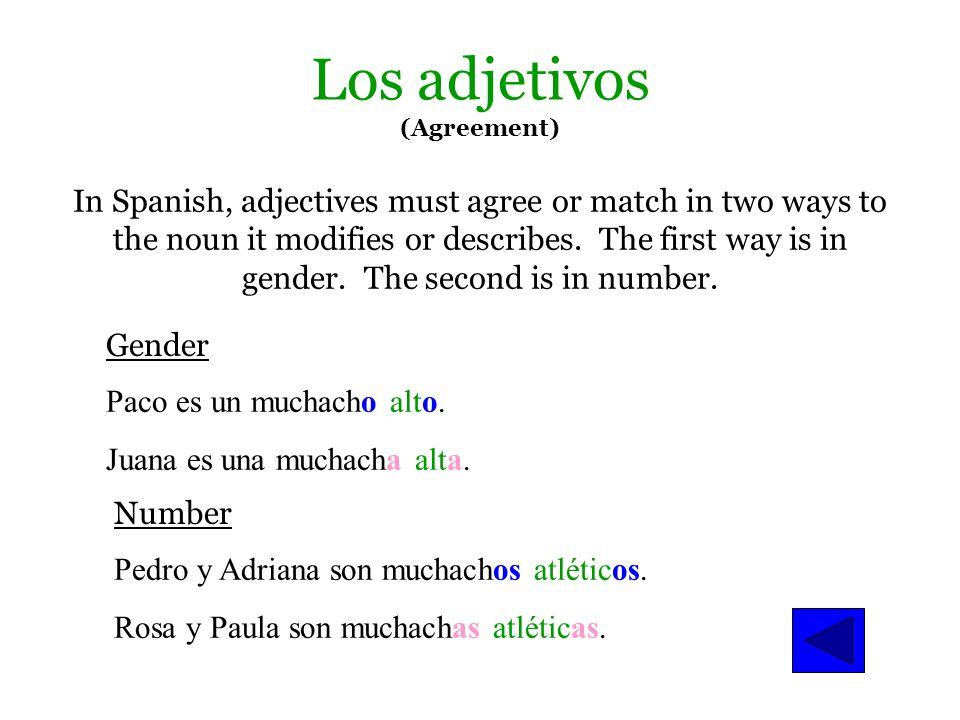 artículos indefinidos Práctica con artículos indefinidos Alicia es ____ maestra de español. Ella trabaja en ___ escuela secundaria. Es ___ amiga de Fr