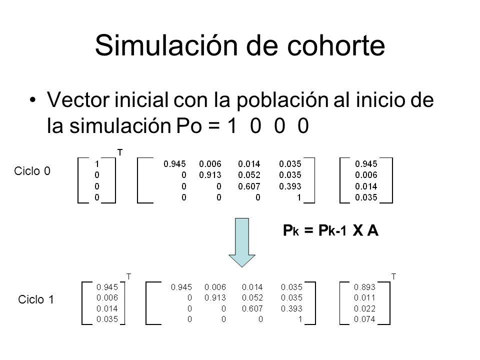 Simulación de cohorte Vector inicial con la población al inicio de la simulación Po = 1 0 0 0 P k = P k-1 X A Ciclo 0 Ciclo 1