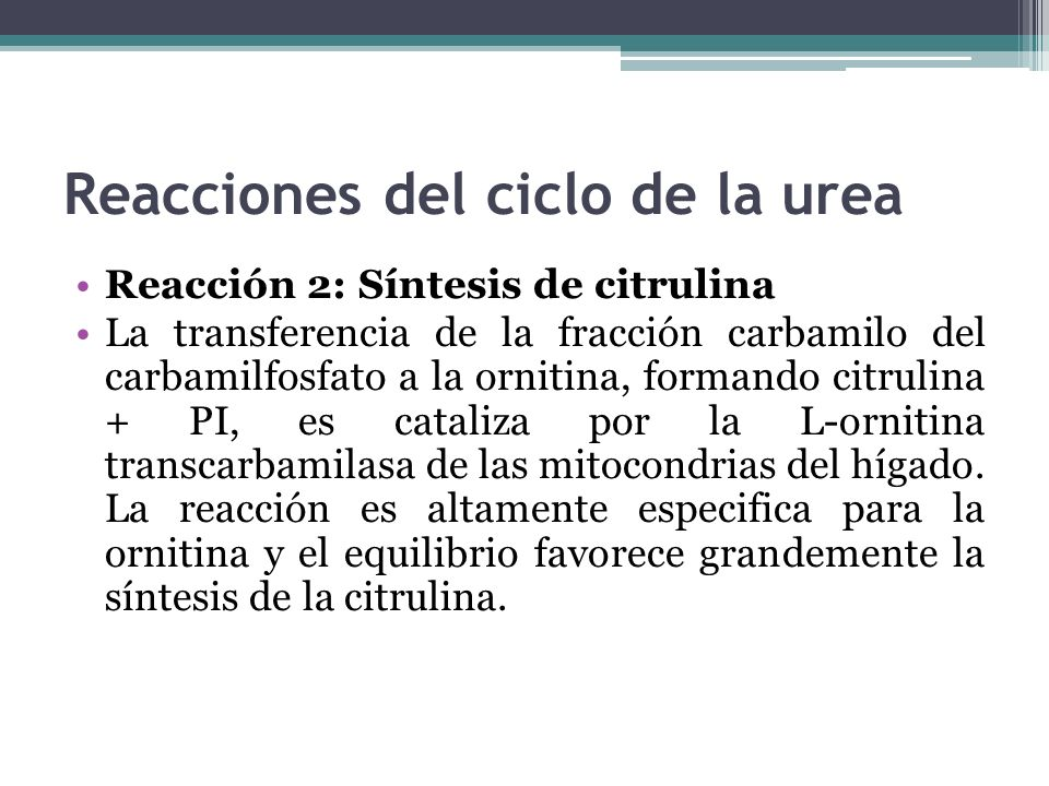 Reacciones del ciclo de la urea Reacción 2: Síntesis de citrulina La transferencia de la fracción carbamilo del carbamilfosfato a la ornitina, formand