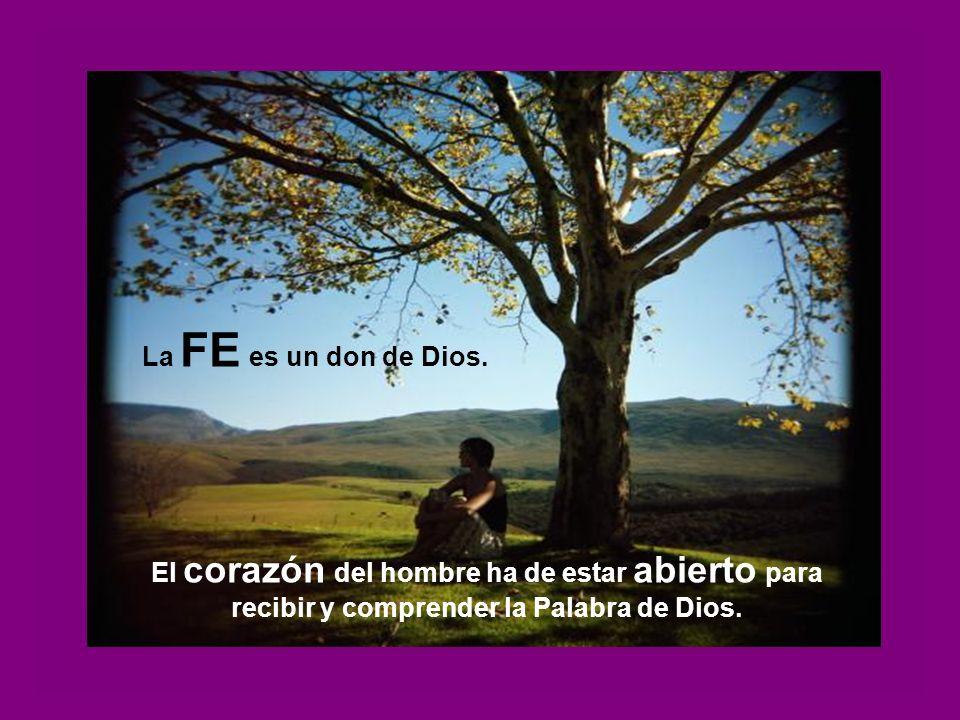 La FE es un don de Dios.