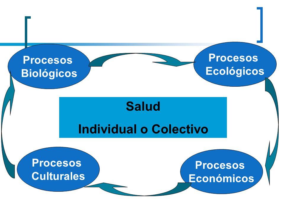 Salud Individual o Colectivo Procesos Culturales Procesos Económicos Procesos Ecológicos Procesos Biológicos