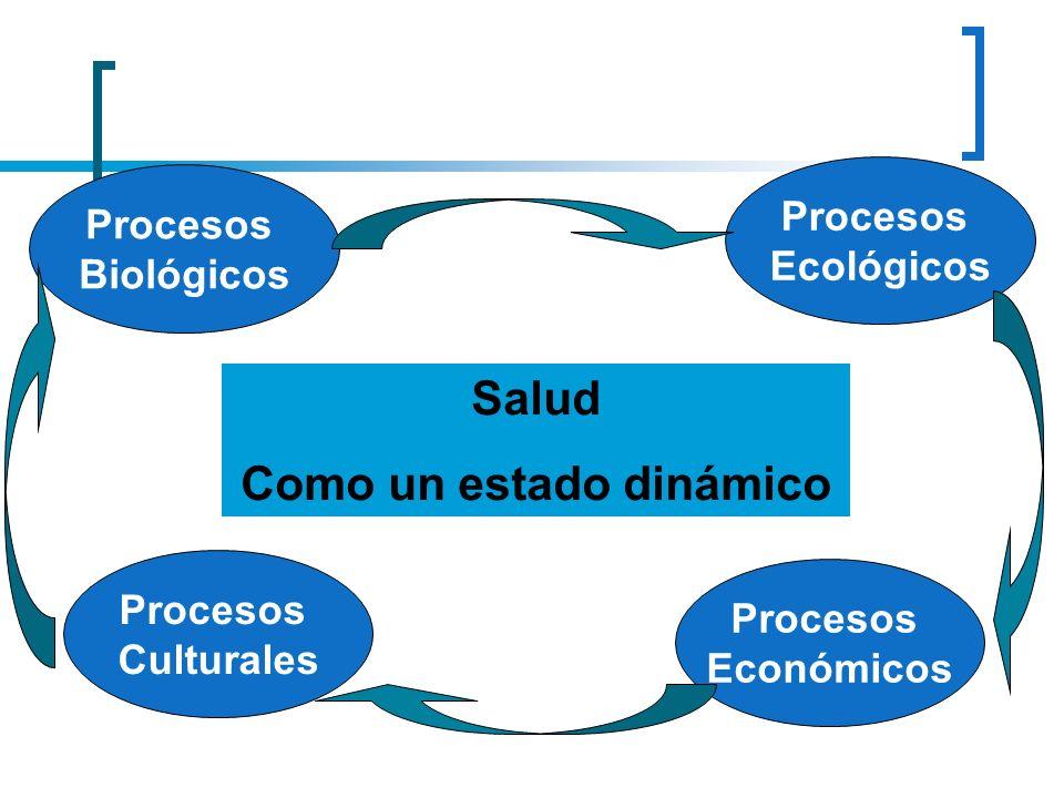 Salud Como un estado dinámico Procesos Culturales Procesos Económicos Procesos Ecológicos Procesos Biológicos