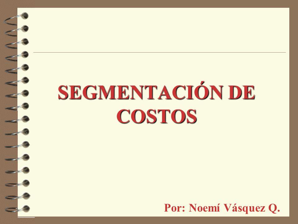 SEGMENTACIÓN DE COSTOS Por: Noemí Vásquez Q.