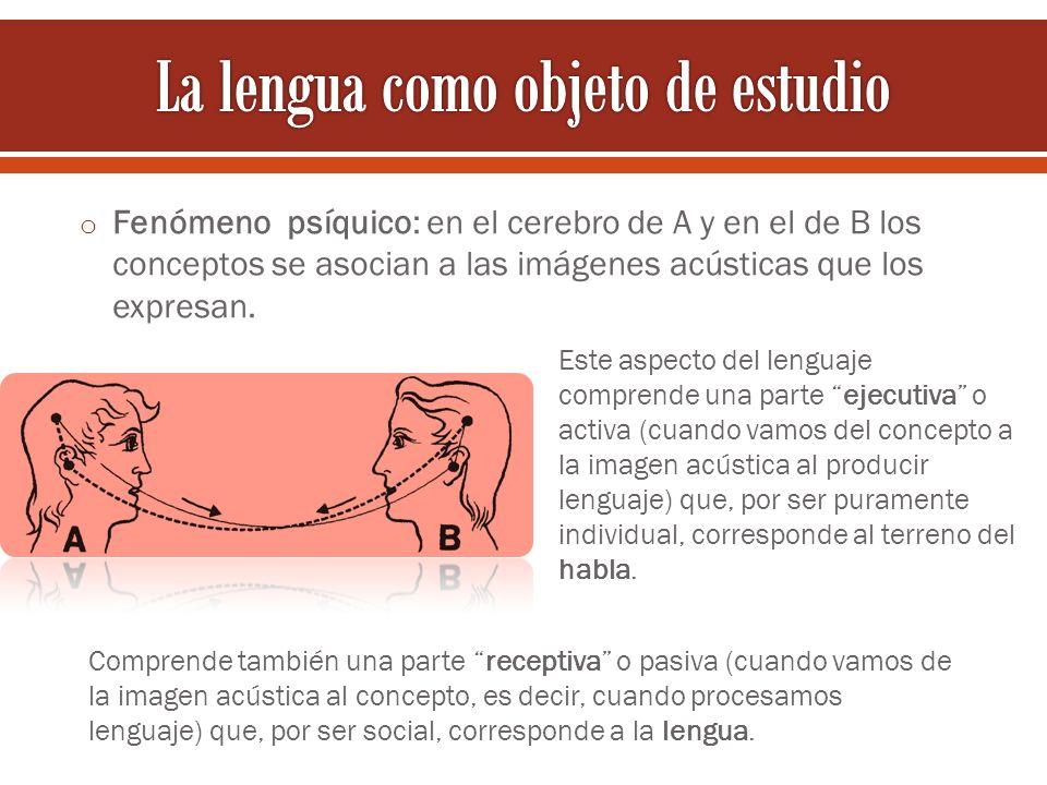 o Fenómeno psíquico: en el cerebro de A y en el de B los conceptos se asocian a las imágenes acústicas que los expresan. Este aspecto del lenguaje com