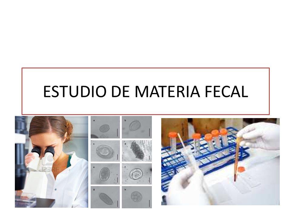 ESTUDIO DE MATERIA FECAL