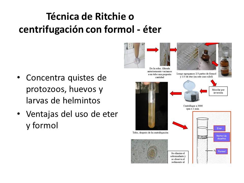Técnica de Ritchie o centrifugación con formol - éter Concentra quistes de protozoos, huevos y larvas de helmintos Ventajas del uso de eter y formol