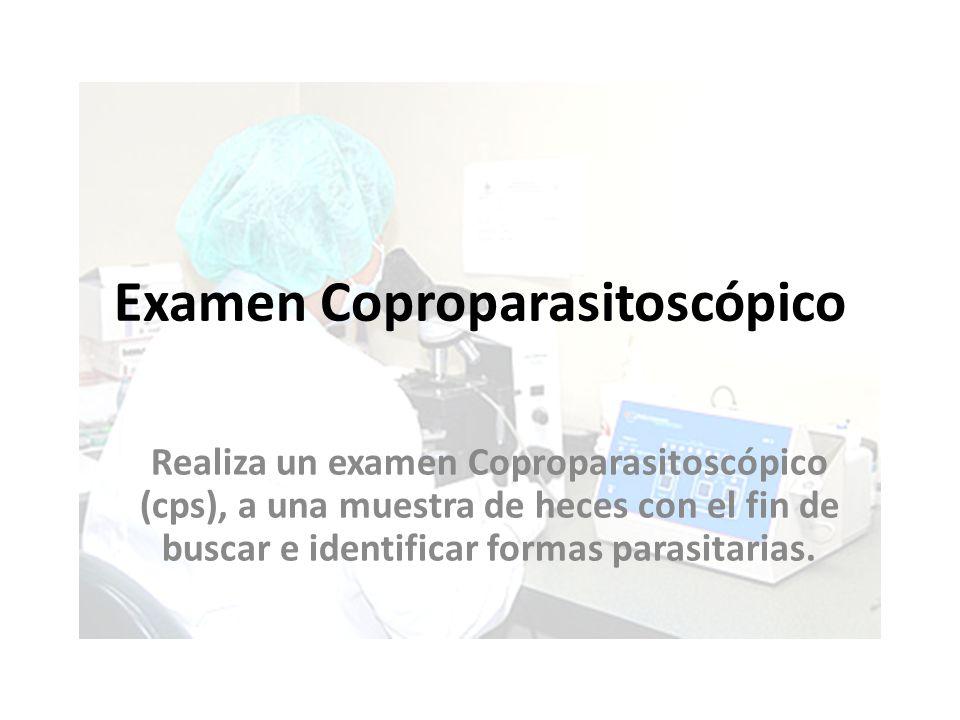 Examen Coproparasitoscópico Realiza un examen Coproparasitoscópico (cps), a una muestra de heces con el fin de buscar e identificar formas parasitaria