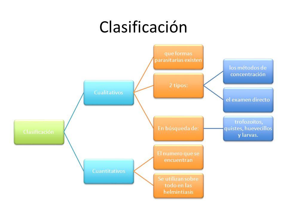 Clasificación Cualitativos que formas parasitarias existen 2 tipos: los métodos de concentración el examen directoEn búsqueda de: trofozoitos, quistes