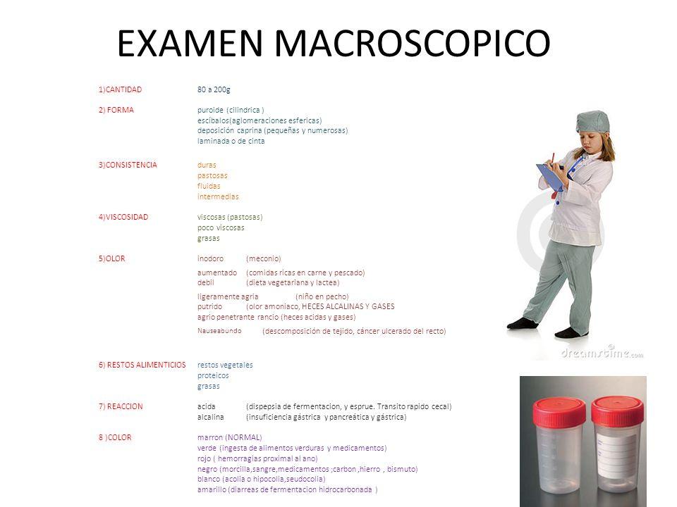 EXAMEN MACROSCOPICO 1)CANTIDAD80 a 200g 2) FORMApuroide (cilindrica ) escíbalos(aglomeraciones esfericas) deposición caprina (pequeñas y numerosas) la