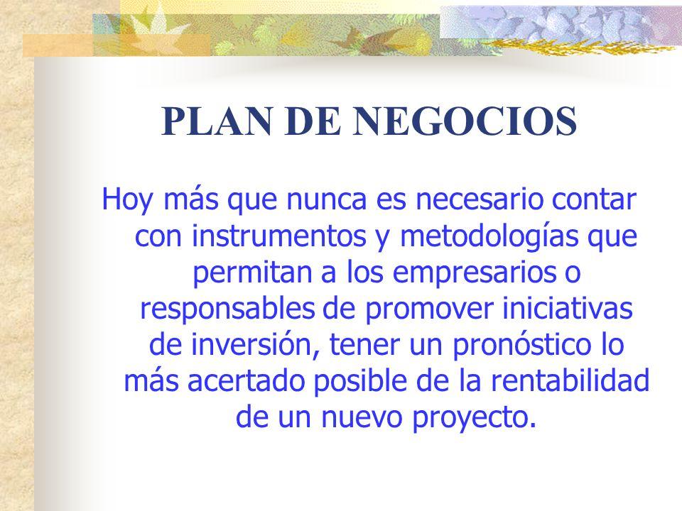 5.0 ANALISIS DEL MERCADO 5.3 Análisis de la oferta: Competidores directos.