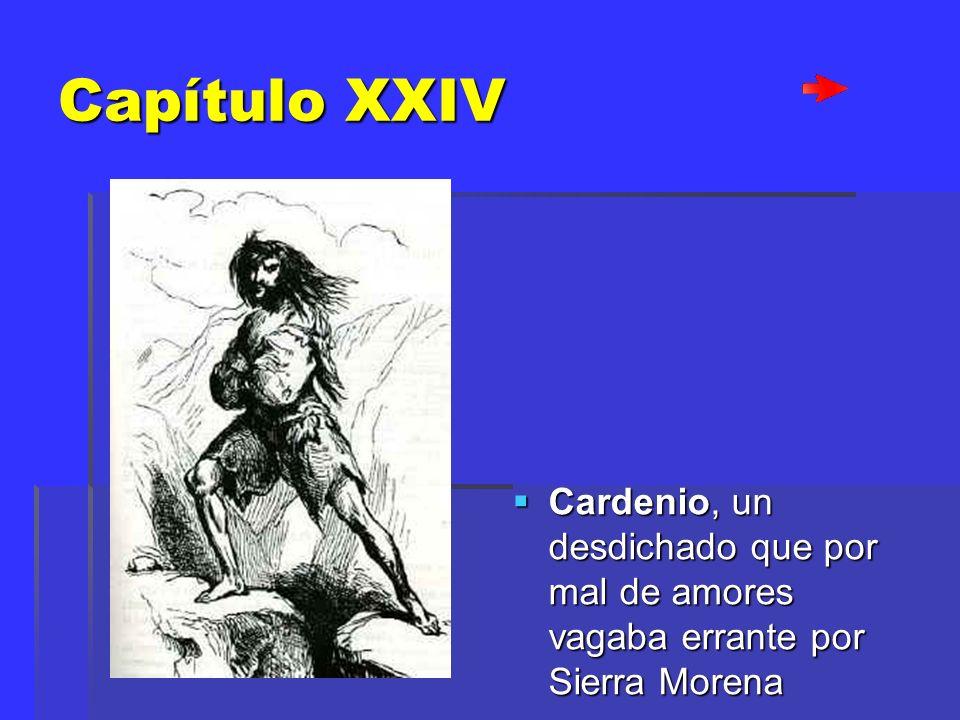 Capítulo XXIV Cardenio, Cardenio, un desdichado que por mal de amores vagaba errante por Sierra Morena