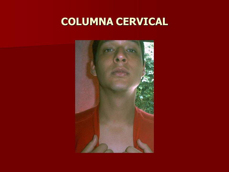 GLANDULA TIROIDES Linea media, delante de cartílago tiroides.