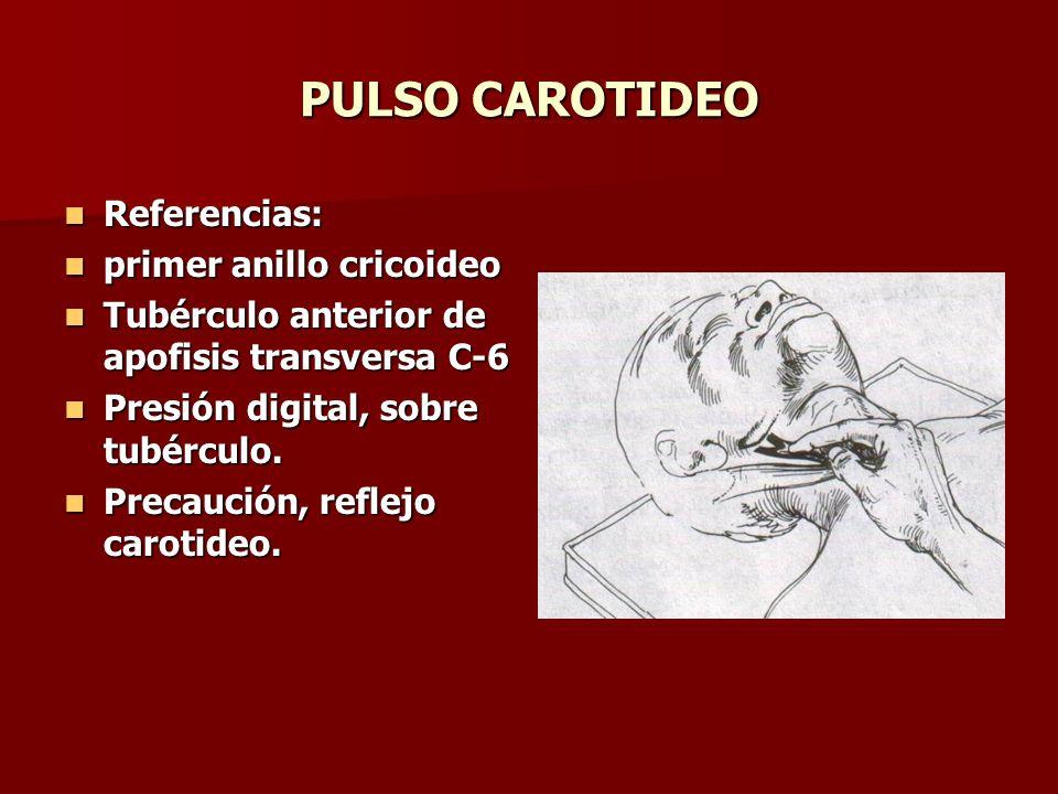 PULSO CAROTIDEO Referencias: Referencias: primer anillo cricoideo primer anillo cricoideo Tubérculo anterior de apofisis transversa C-6 Tubérculo ante
