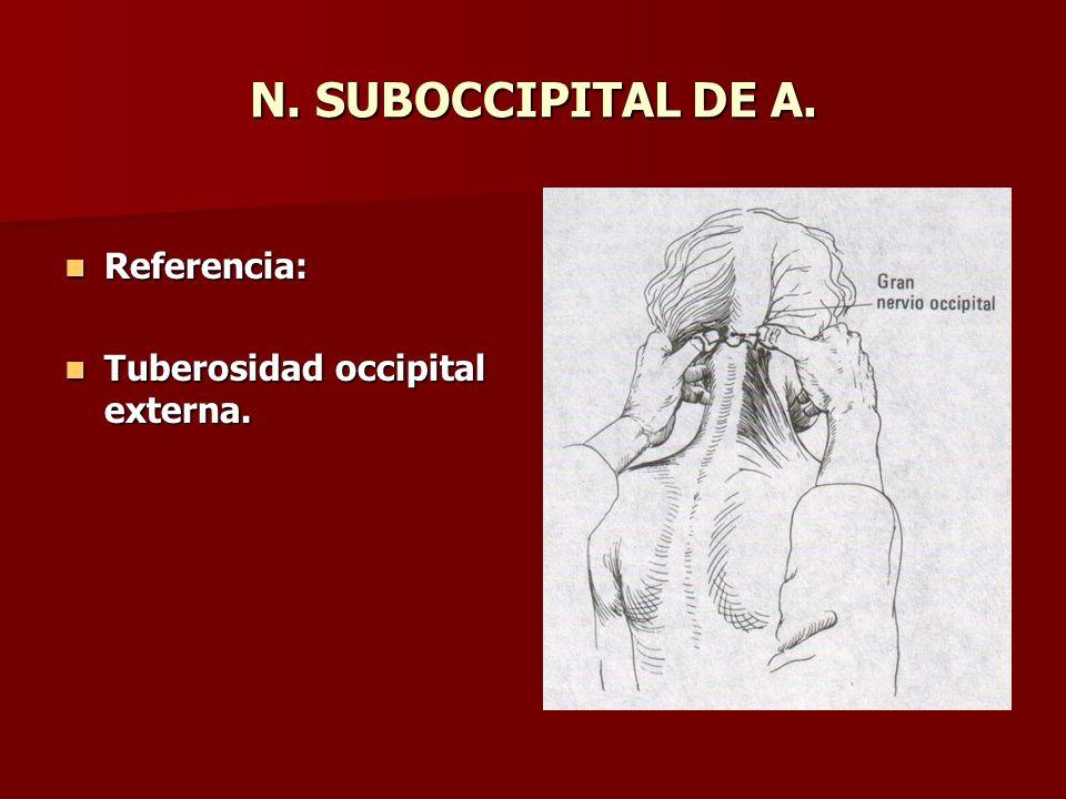 N. SUBOCCIPITAL DE A. Referencia: Referencia: Tuberosidad occipital externa. Tuberosidad occipital externa.