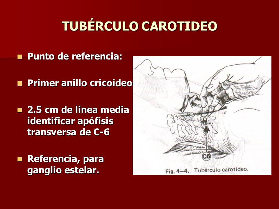 TUBÉRCULO CAROTIDEO Punto de referencia: Punto de referencia: Primer anillo cricoideo Primer anillo cricoideo 2.5 cm de linea media identificar apófis