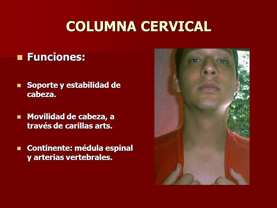 COLUMNA CERVICAL Funciones: Funciones: Soporte y estabilidad de cabeza. Soporte y estabilidad de cabeza. Movilidad de cabeza, a través de carillas art