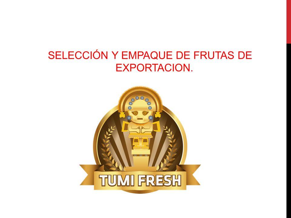 SELECCIÓN Y EMPAQUE DE FRUTAS DE EXPORTACION.
