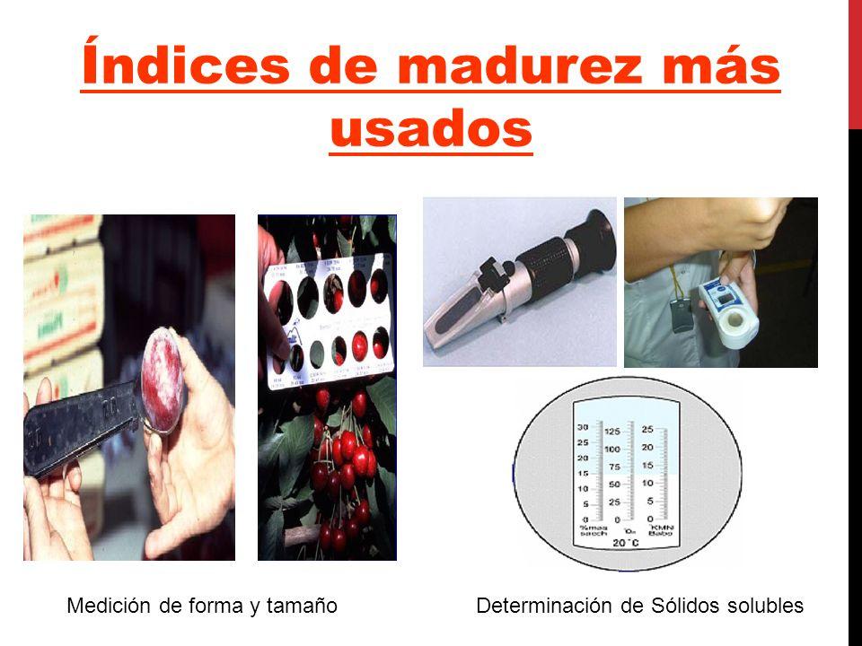 Índices de madurez más usados Medición de forma y tamaño Determinación de Sólidos solubles
