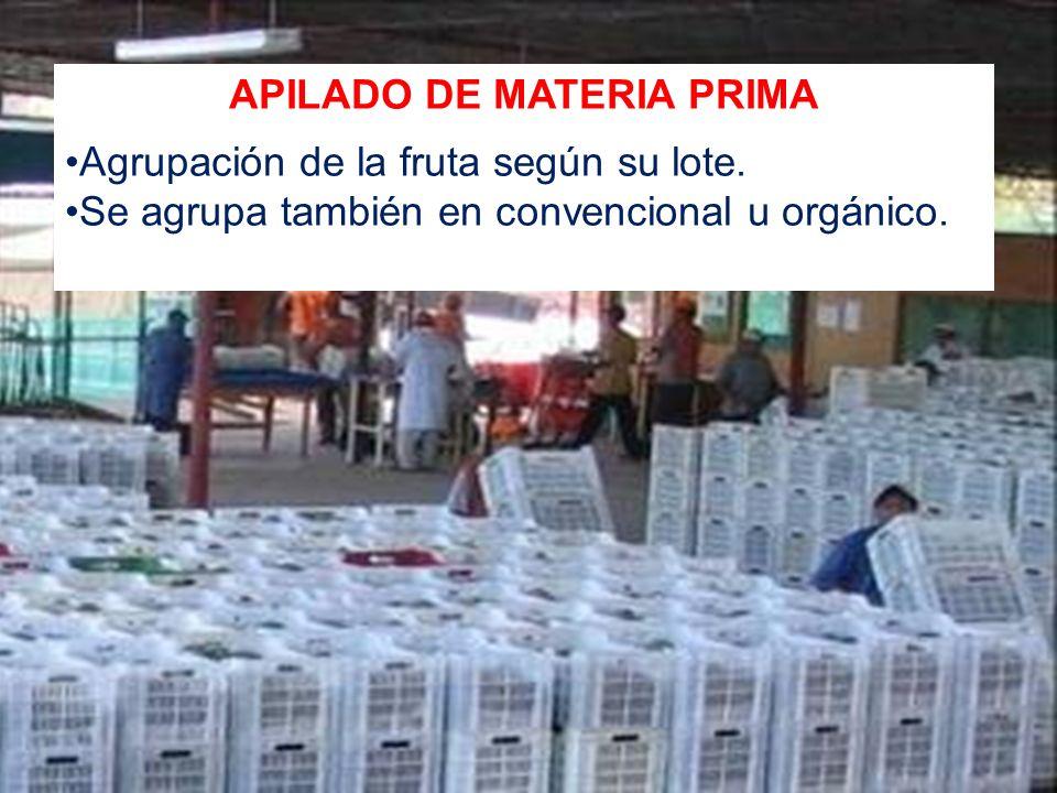 APILADO DE MATERIA PRIMA Agrupación de la fruta según su lote. Se agrupa también en convencional u orgánico.
