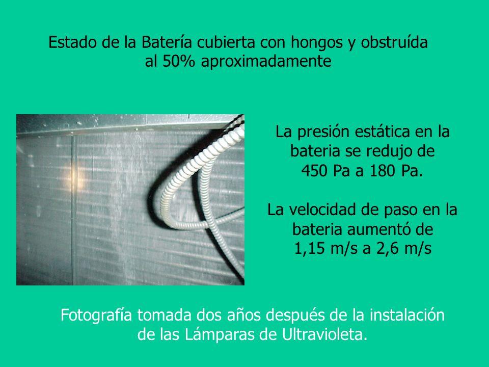 Estado de la Batería cubierta con hongos y obstruída al 50% aproximadamente La presión estática en la bateria se redujo de 450 Pa a 180 Pa. La velocid