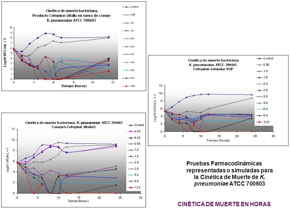 Pruebas Farmacodinámicas representadas o simuladas para la Cinética de Muerte de K. pneumoniae ATCC 700603 CINÉTICA DE MUERTE EN HORAS