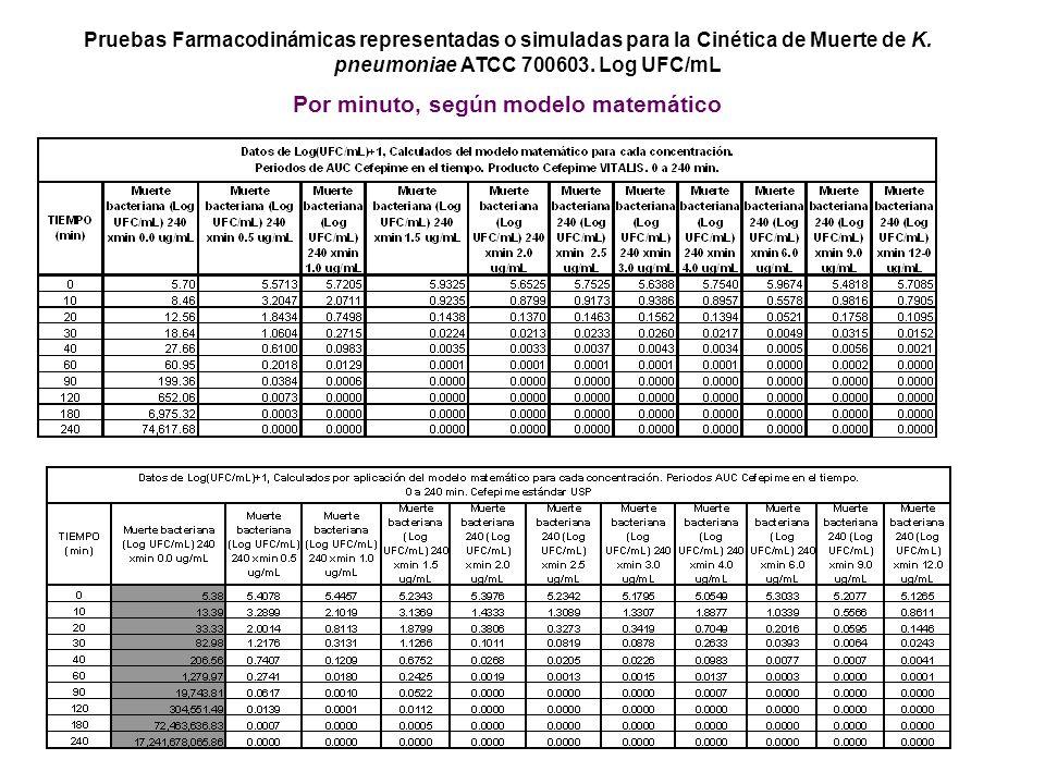 Pruebas Farmacodinámicas representadas o simuladas para la Cinética de Muerte de K. pneumoniae ATCC 700603. Log UFC/mL Por minuto, según modelo matemá