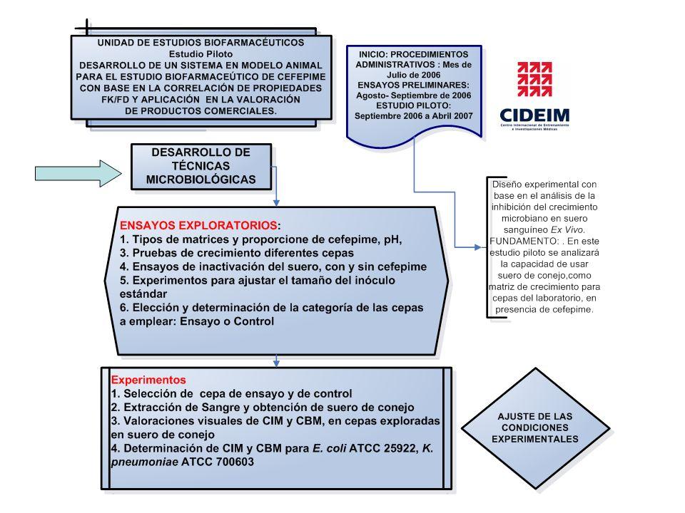 Transformación logarítmica (UFC/mL) Pruebas Farmacodinámicas representadas o simuladas para la Cinética de Muerte de K.